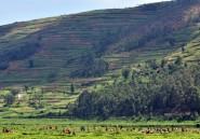 Agathe Habyarimana ne sera pas jugée au Rwanda