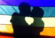 Les gays vont faire leur coming out