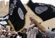 Une journaliste chez les salafistes