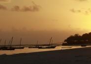 À Zanzibar, le tourisme à fleur de peau