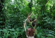 La forêt est l'avenir de l'Afrique