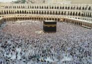 A quoi servent les musulmans?
