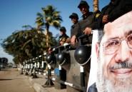 Tamarod, la rébellion qui veut chasser les Frères musulmans du pouvoir