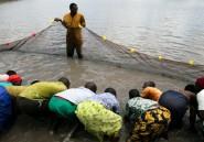 Du poisson pour les porteurs du VIH