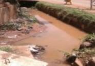 Insalubrité : L'autre visage de Bobo-Dioulasso après les premières pluies