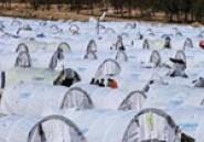 Camp de Choucha : 3176 réfugiés ont bénéficié du programme de l'UNHCR