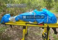 Horreur à Tambacounda : Un homme égorgé, trainé et jeté dans un bassin d'eau
