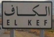 9 partis politiques forment une coordination régionale du salut au Kef