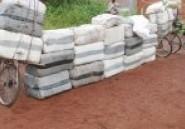 Brigade mobile des Douanes : 1 260 kg de chanvre indien saisis à Bobo-Dioulasso