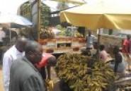 Produits alimentaires à Ouaga : La banane ivoirienne redevient abordable sur le marché