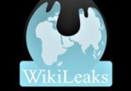 Le serveur de WikiLeaks vendu sur internet