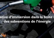 Tentative d'immersion dans la boite noire des subventions de l'énergie
