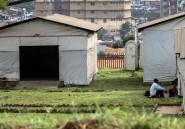 Ce qui pose problème dans la lutte contre Ebola