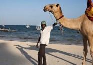 Le tourisme kényan est en berne