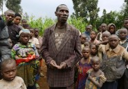 RDC-Rwanda: les arbres de la discorde