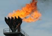 Déclin des cours du pétrole: le Nigeria promet de contrôler ses dépenses et l'inflation