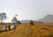 Après leurs victoires, les athlètes kényans investissent leurs primes dans l'immobilier