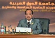 Doutes et scepticisme sur l'annonce d'une future force arabe