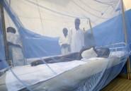 Niger: 5 millions de moustiquaires distribuées contre le paludisme