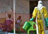 Réunion en Guinée pour accélérer la livraison de vaccins contre des maladies virales