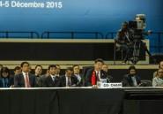 """Le sommet Chine-Afrique pour une """"solution africaine"""" aux conflits sur le continent"""