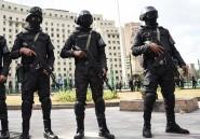 Le régime égyptien compare les accusations de l'Occident à «la propagande de Goebbels»