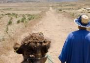Avec la COP22, le Maroc veut réussir sa mue écologique