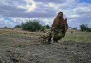 En Somalie, les rivières tournent