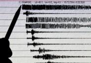 Au moins 11 morts et une centaine de blessés dans un séisme en Tanzanie (police)
