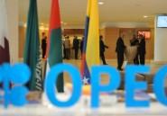 Opep: le Gabon soutiendra la position majoritaire sur un gel de la production