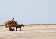 Le réchauffement climatique menace de faire disparaître la mousson au Sahel