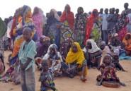 Niger/Boko Haram: recensement des habitants et réfugiés de Diffa