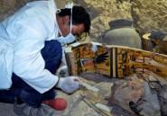 """Égypte: les restes d'un """"jardin funéraire"""" de l'ère pharaonique découverts"""