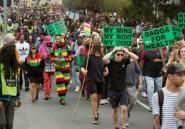 Afrique du Sud: manifestation pour la dépénalisation du cannabis au Cap