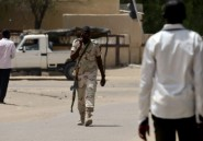 "Niger: les 37 filles et garçons kidnappés par Boko Haram ""activement"" recherchés"
