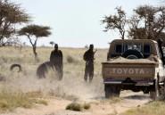 Sahara: le Polisario dit avoir arrêté 19 trafiquants de drogue marocains