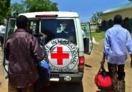 Soudan du Sud: un chauffeur de la Croix-Rouge tué dans une embuscade