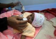 La sécurité alimentaire se détériore en Afrique du Nord, au Moyen-Orient (FAO)