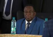 Le président du Zimbabwe appelle les émigrés