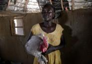 Au Sénégal, les femmes gagnent en autonomie grâce