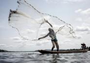 """Sur le fleuve Oubangui, les """"péages"""" des groupes armés centrafricains"""