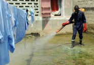 Sénégal: conférence panafricaine sur le paludisme, un fléau toujours en progression