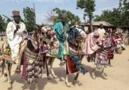 Cameroun: l'ombre de Boko Haram hante les éleveurs du nord