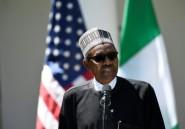 Présidentielle au Nigeria: une trentaine de partis d'opposition font alliance