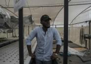 """Jeunes, dynamiques, riches et ambitieux, les nouveaux """"gentlemen farmers"""" du Nigeria"""