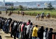 L'inexorable déclin du hippisme en Algérie, appauvri et mal vu