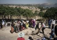 """""""Tué comme un chien"""": au Zimbabwe, les familles des victimes post-électorales crient leur colère"""