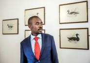 Zimbabwe: opposition et pouvoir en situation délicate
