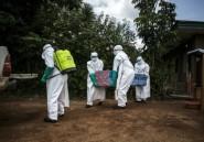 """Ebola en RDC: risque national et régional """"très élevé"""" de propagation"""
