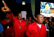 Afrique du Sud: l'opposition radicale rattrapée par une affaire financière